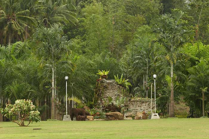 rack end, ball joint, rod end